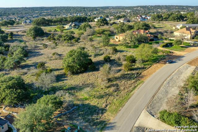 1415 Decanter Dr, New Braunfels, TX 78132 (MLS #1440516) :: The Glover Homes & Land Group