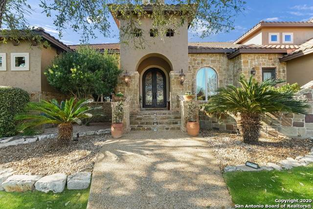 1419 Decanter Dr, New Braunfels, TX 78132 (MLS #1440517) :: The Glover Homes & Land Group