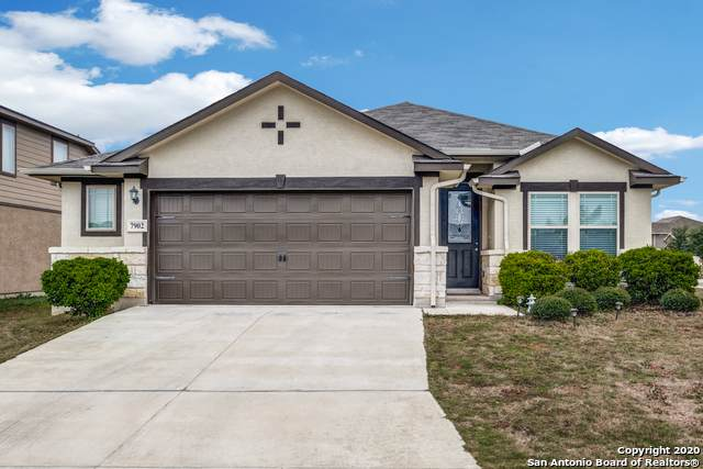 7903 Lovela Bend, San Antonio, TX 78254 (MLS #1440626) :: ForSaleSanAntonioHomes.com