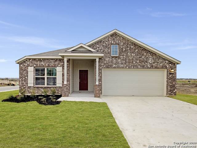 10790 Francisco Way, Converse, TX 78109 (MLS #1440691) :: Reyes Signature Properties