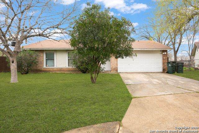 6703 Avila, San Antonio, TX 78239 (MLS #1440771) :: Alexis Weigand Real Estate Group
