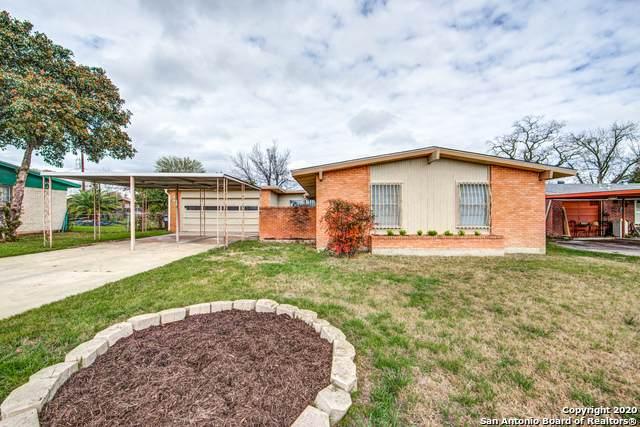 311 Mcneel Rd, San Antonio, TX 78228 (MLS #1440838) :: The Gradiz Group