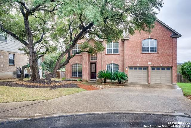 25923 Laurel Springs, San Antonio, TX 78260 (MLS #1440900) :: The Glover Homes & Land Group