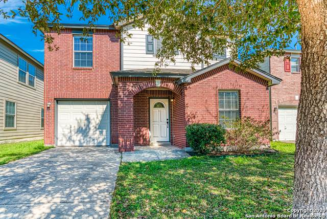 7522 Cedar Farm, San Antonio, TX 78239 (MLS #1440928) :: The Gradiz Group