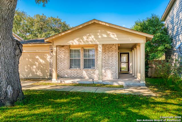 517 Hinge Loop, Cibolo, TX 78108 (MLS #1440937) :: HergGroup San Antonio