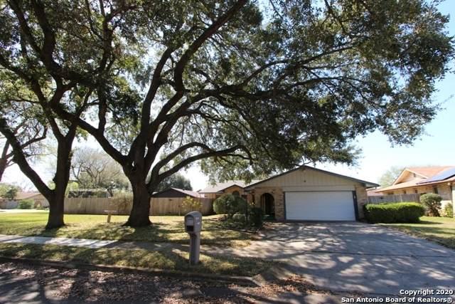 13003 El Marro St, San Antonio, TX 78233 (MLS #1440954) :: The Gradiz Group