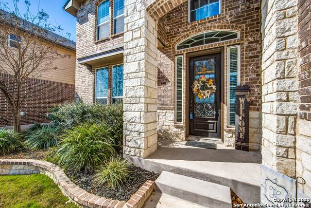 229 Bee Caves Cove, Cibolo, TX 78108 (MLS #1441030) :: Alexis Weigand Real Estate Group