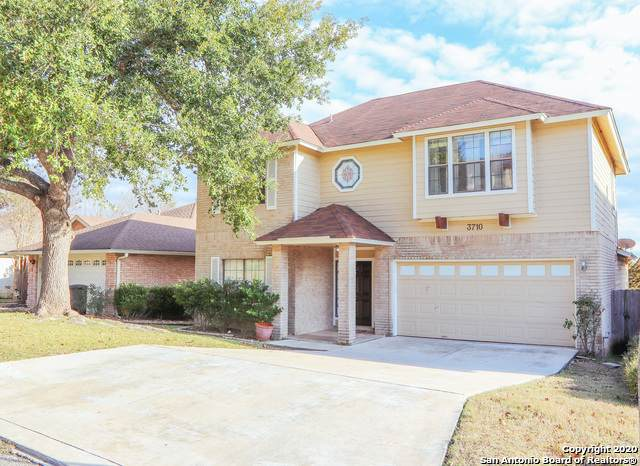 3710 Colter Rd, San Antonio, TX 78247 (MLS #1441104) :: HergGroup San Antonio
