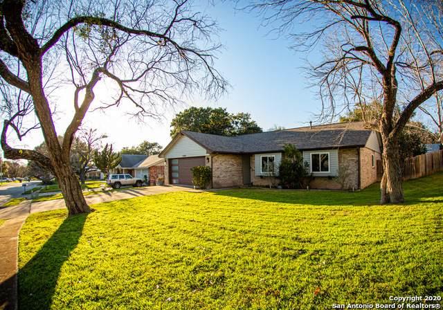 12307 Ecksminster St, San Antonio, TX 78216 (MLS #1441162) :: Vivid Realty