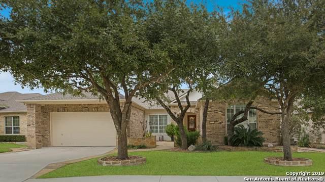 12710 Texas Thistle, San Antonio, TX 78253 (MLS #1441248) :: The Gradiz Group