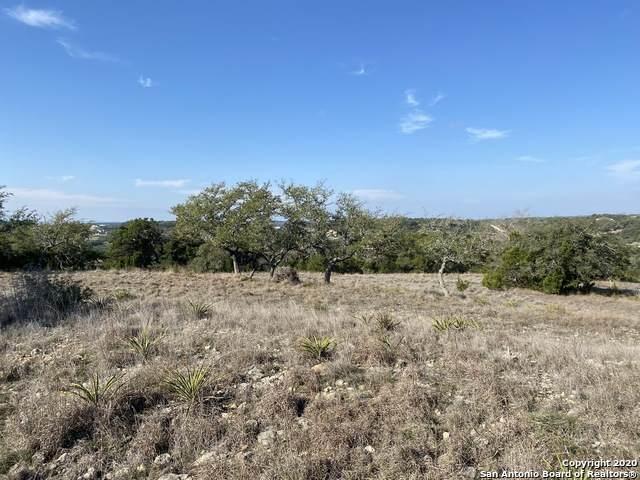 207 Ridge Pt, Spring Branch, TX 78070 (MLS #1441258) :: The Gradiz Group