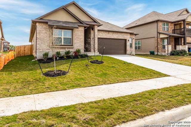 4664 Grey Sotol Way, Schertz, TX 78108 (MLS #1441301) :: Alexis Weigand Real Estate Group