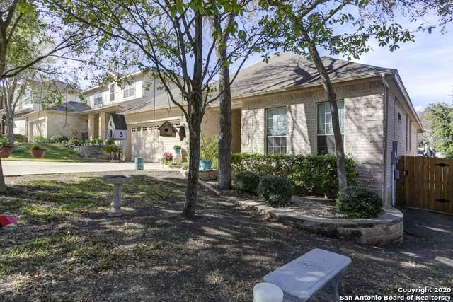 785 San Gabriel Loop, New Braunfels, TX 78132 (MLS #1441429) :: BHGRE HomeCity