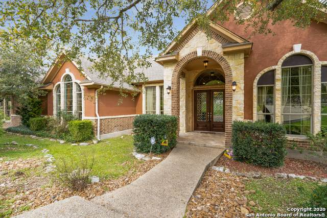 22018 Roan Bluff, San Antonio, TX 78259 (MLS #1441512) :: The Glover Homes & Land Group