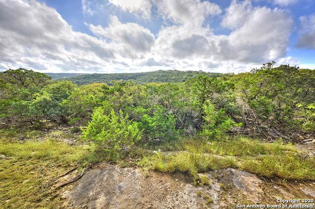 107 High View Dr, Boerne, TX 78006 (MLS #1441525) :: The Mullen Group | RE/MAX Access