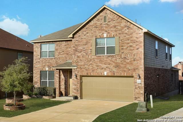 20330 Oak Panache, San Antonio, TX 78259 (MLS #1441798) :: Exquisite Properties, LLC