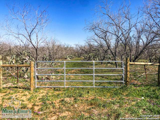 10267 Fm 2146 Tract 4, Charlotte, TX 78011 (MLS #1442483) :: The Heyl Group at Keller Williams