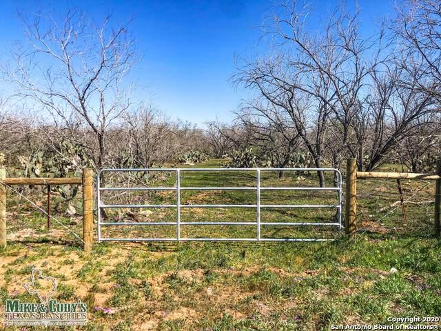 10267 Fm 2146 Tract 4, Charlotte, TX 78011 (MLS #1442483) :: Berkshire Hathaway HomeServices Don Johnson, REALTORS®