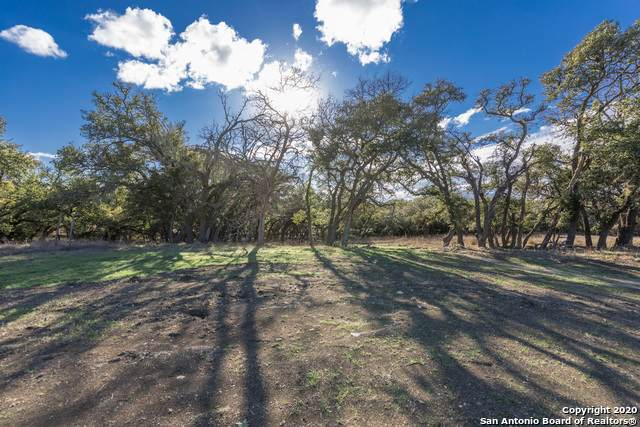 1234 Rr 1623, Blanco, TX 78606 (MLS #1442914) :: Alexis Weigand Real Estate Group