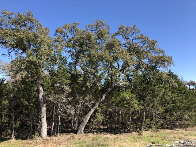 1216 (LOT 1783) Deerfoot Circle, New Braunfels, TX 78132 (MLS #1443567) :: Neal & Neal Team