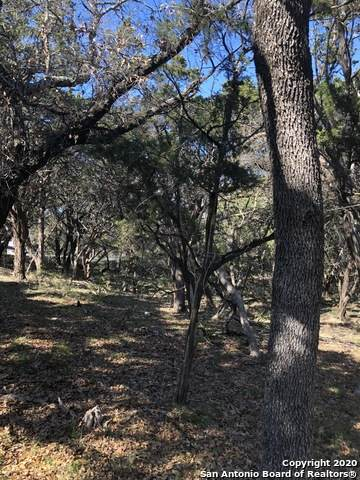 384 Eagle Rock Rd, Spring Branch, TX 78070 (MLS #1443877) :: Neal & Neal Team