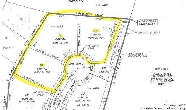 22931 Homestead Mesa, San Antonio, TX 78255 (MLS #1444050) :: Tom White Group