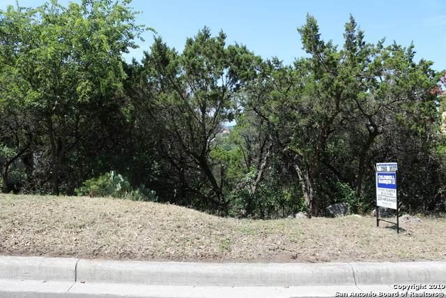6515 Buffalo Hills, San Antonio, TX 78256 (MLS #1444081) :: The Gradiz Group