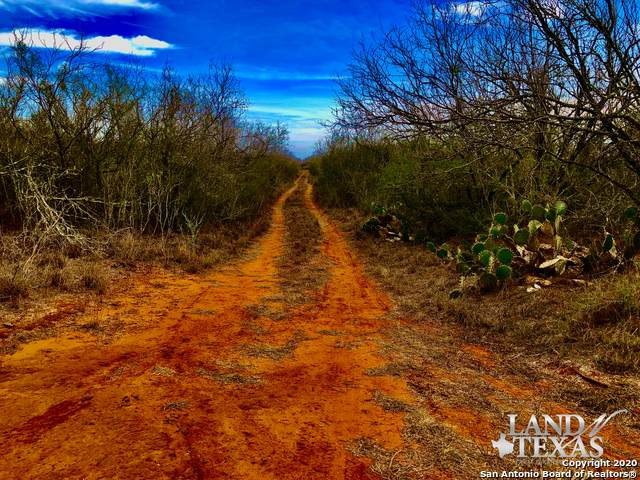 0 County Road 3201, Pearsall, TX 78061 (MLS #1444174) :: Warren Williams Realty & Ranches, LLC