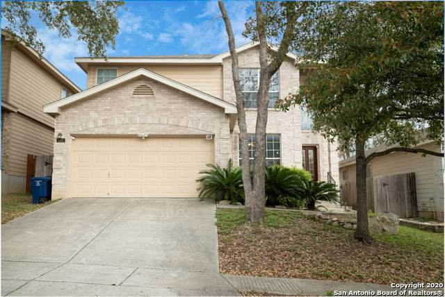5431 Goshen Grove, San Antonio, TX 78247 (MLS #1444469) :: The Heyl Group at Keller Williams