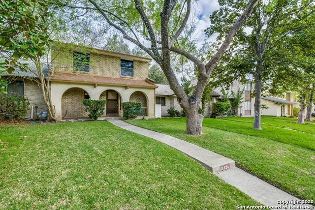 11824 Apple Blossom, San Antonio, TX 78247 (MLS #1444474) :: Neal & Neal Team