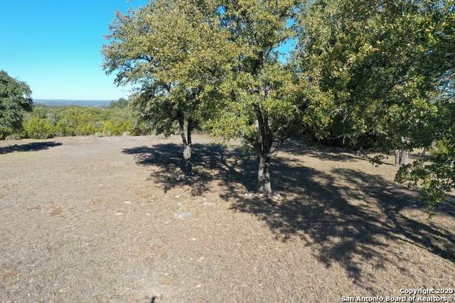 1227 Ensenada Dr, Canyon Lake, TX 78133 (MLS #1444636) :: Alexis Weigand Real Estate Group