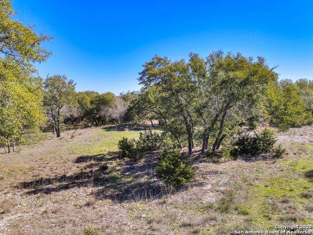 1670 Bella Vista, Canyon Lake, TX 78133 (MLS #1445967) :: Reyes Signature Properties