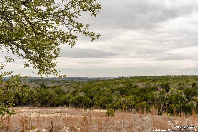 442 Lane Valley Rd, Comfort, TX 78013 (MLS #1446001) :: The Mullen Group | RE/MAX Access