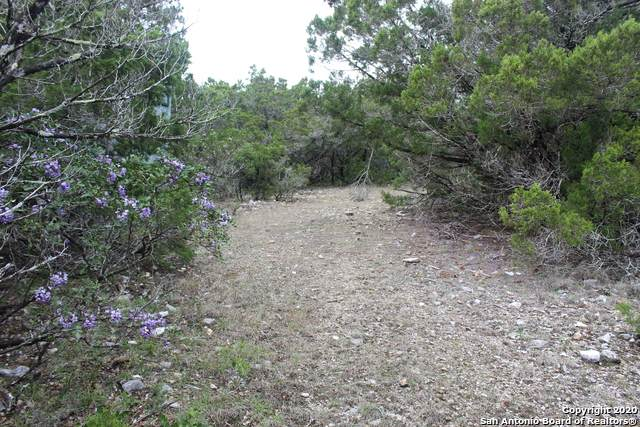 LOT 80 Upper Loma Verde, Medina, TX 78055 (MLS #1446054) :: ForSaleSanAntonioHomes.com