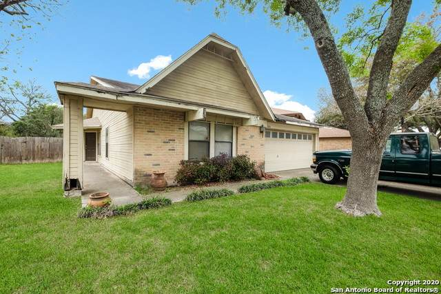 3406 Lone Valley St, San Antonio, TX 78247 (MLS #1446502) :: Tom White Group