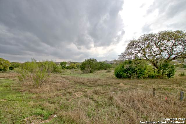 5721 Palisades View, New Braunfels, TX 78132 (MLS #1446541) :: Exquisite Properties, LLC