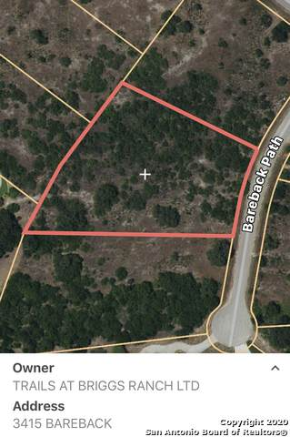 3415 Bareback Path, San Antonio, TX 78245 (MLS #1446586) :: The Glover Homes & Land Group