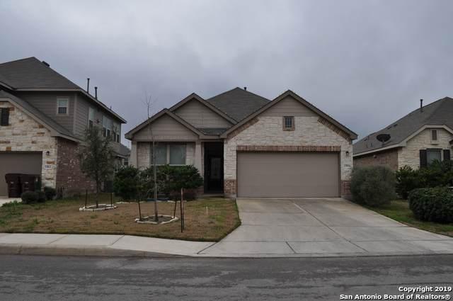 13816 Bellows Path, San Antonio, TX 78253 (MLS #1446682) :: Vivid Realty