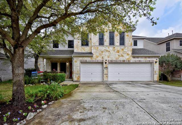25547 Wentink Ave, San Antonio, TX 78261 (MLS #1446952) :: The Gradiz Group