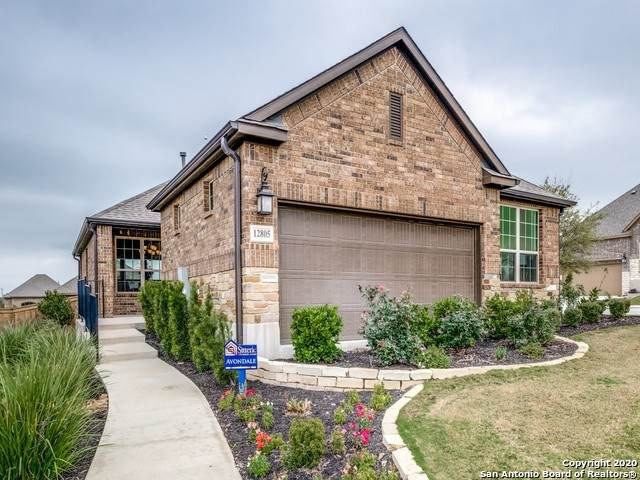 12805 Big Tank Ranch, San Antonio, TX 78245 (MLS #1446975) :: JP & Associates Realtors