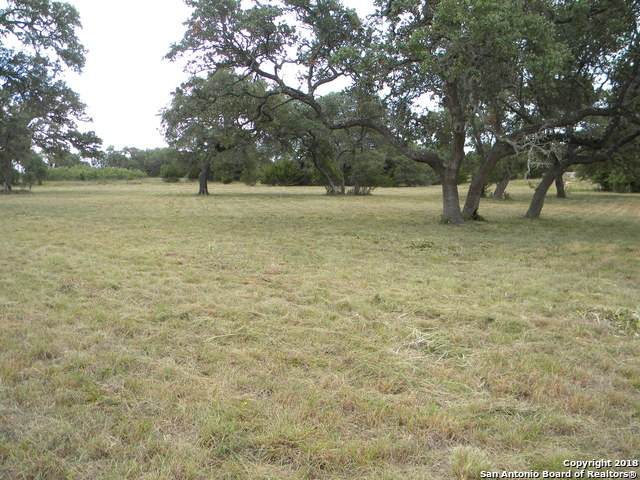 338 John Price, Blanco, TX 78606 (MLS #1447381) :: Alexis Weigand Real Estate Group