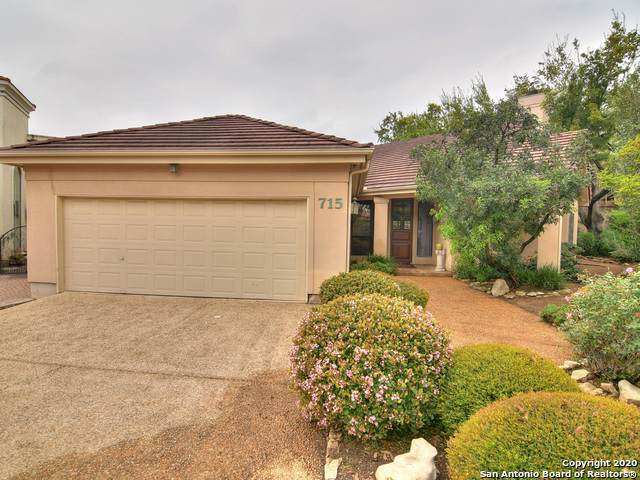 715 S Birdsong, San Antonio, TX 78258 (MLS #1447632) :: The Castillo Group