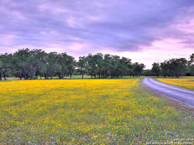 2734 Harvest Creek Ln, Boerne, TX 78006 (MLS #1447684) :: Santos and Sandberg
