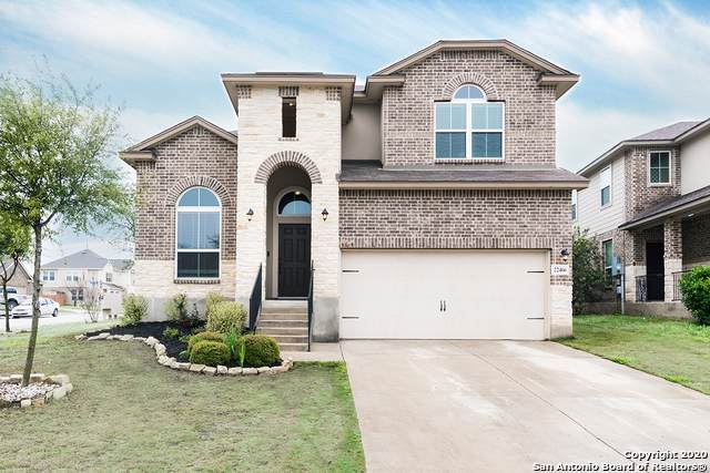 22466 Akin Fawn, San Antonio, TX 78261 (MLS #1447807) :: Exquisite Properties, LLC