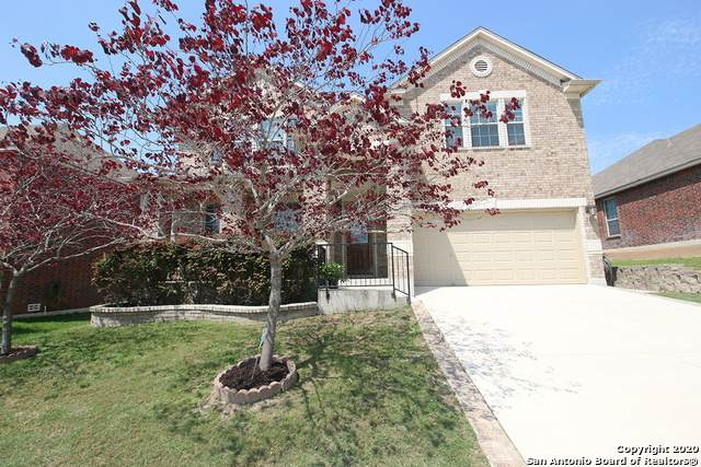 213 Springtree Ln, Cibolo, TX 78108 (MLS #1447999) :: Legend Realty Group