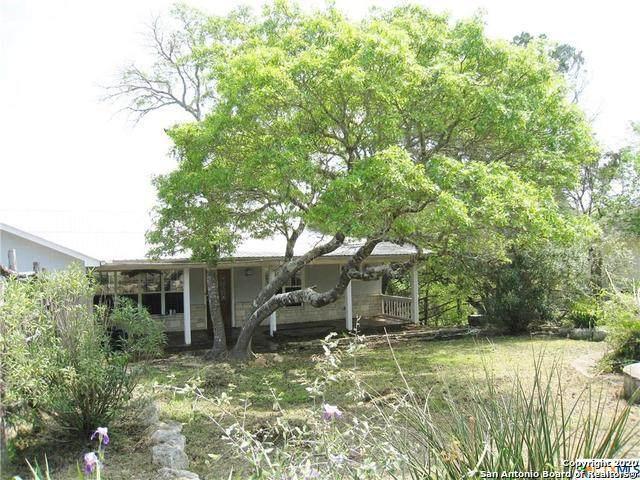 173 Riedel Ln, Canyon Lake, TX 78133 (MLS #1448126) :: Tom White Group