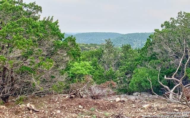 885 Upper Loma Verde, Medina, TX 78055 (MLS #1448267) :: The Gradiz Group