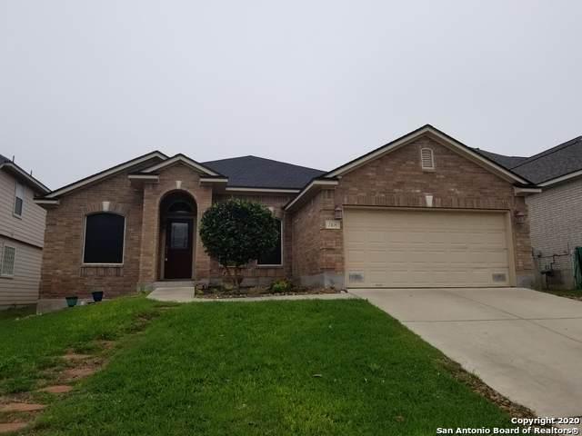 7814 Lacey Oak Cove, San Antonio, TX 78250 (MLS #1448574) :: The Gradiz Group