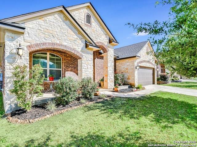 22103 Gypsy View, San Antonio, TX 78261 (MLS #1448784) :: Exquisite Properties, LLC