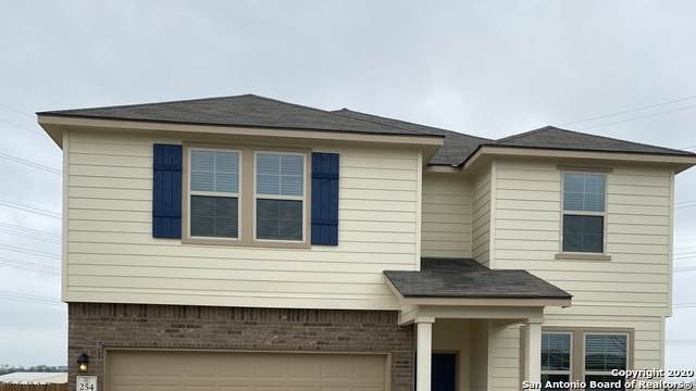 254 High Fence, San Antonio, TX 78245 (MLS #1448937) :: Vivid Realty
